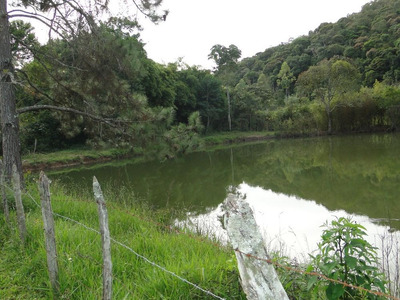 Fazenda - Santos Dumont Minas Gerais