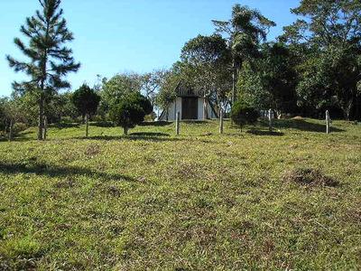 Ibiuna Sitio 8 Alqueires,caseiro,chale,nascente,lago E Pasto