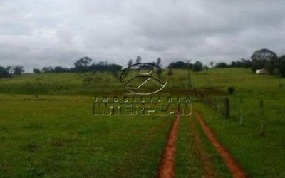 Ref.: Si50092 Tipo: Sitio Cidade: Santa Salete - Sp Bairro: Rural