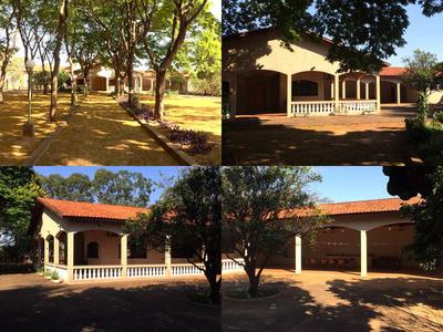 Fazenda No Municipio De Monte Aprazivel, Com 60 Alqueires
