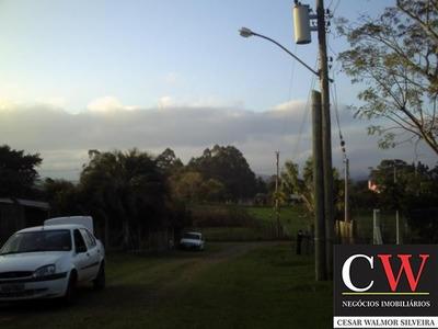 Chácara / Sítio Localizado(a) No Bairro Monte Belo Em Gravataí / Gravataí - T1069