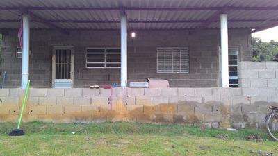 Chácara / 5.000 M² / 2 Lagos / 700 M Da Rodovia / Plantações