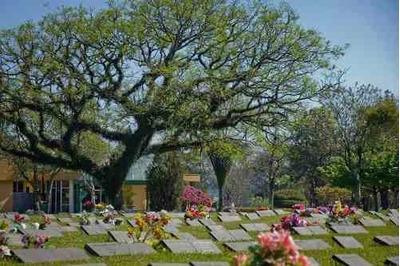 Lote - Cemitério Jardim Da Saudade Curitiba
