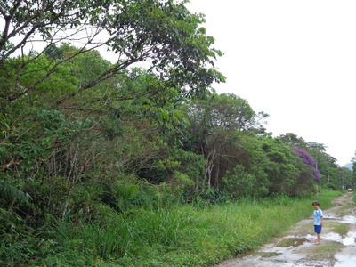 Terreno No Guaraú - Peruíbe - Dois Lotes De 500 Mts