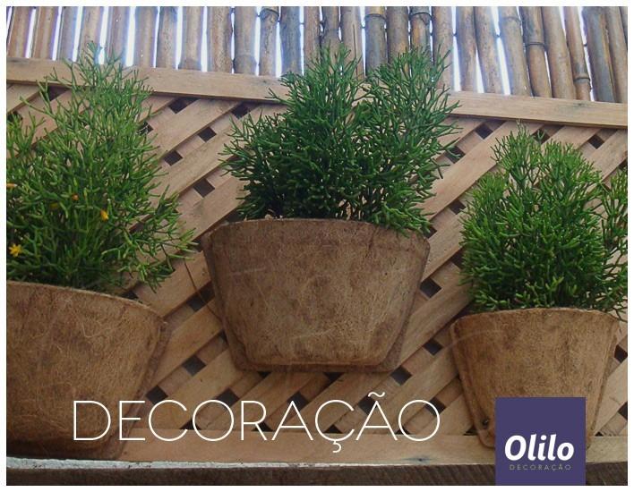 jardim vertical belo horizonte: De Coco Trapézio Médio – Jardim Vertical – R$ 25,50 em Mercado Livre